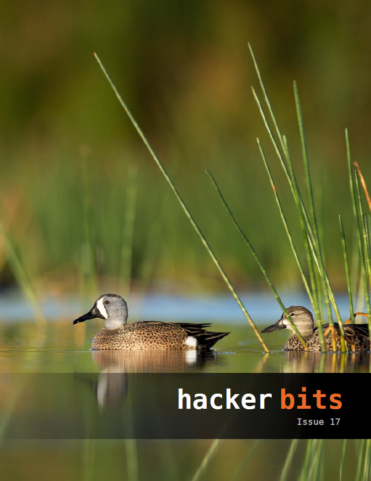Hacker Bits Cover, Issue 17