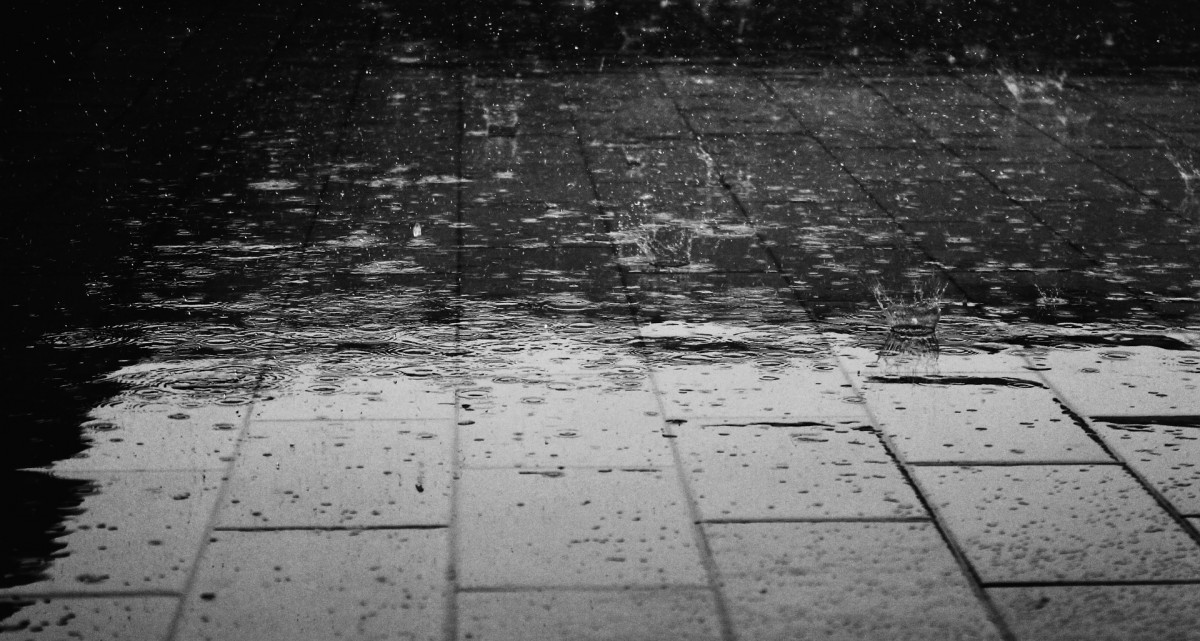 What is the difference between rain and showers