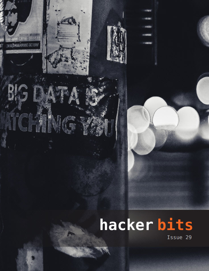 Hacker Bits Cover, Issue 29