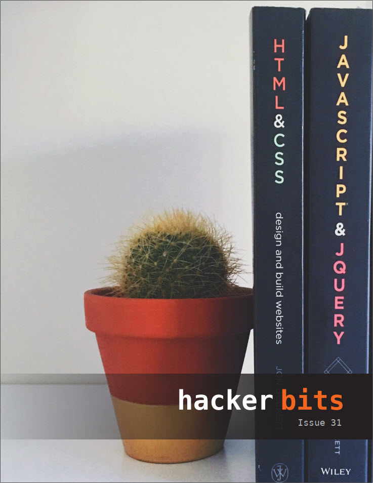 Hacker Bits Cover, Issue 31
