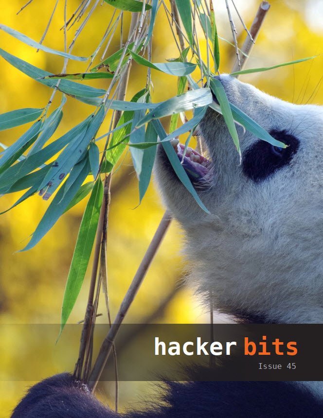 Hacker Bits Cover, Issue 45