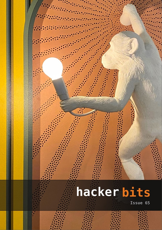 Hacker Bits Cover, Issue 65